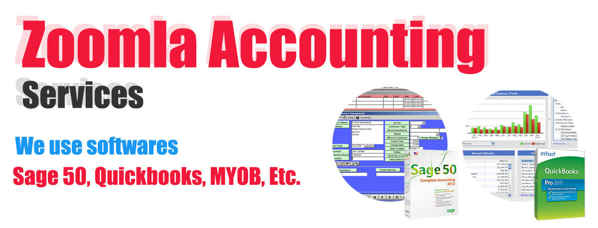 Zoomla Infotech Accounting